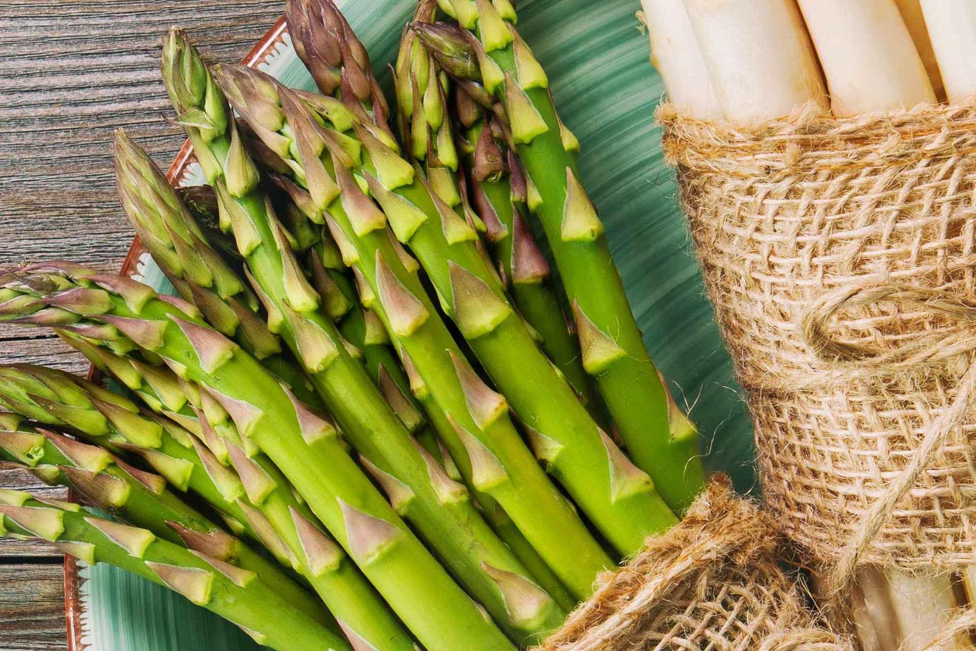 coltivazione asparagi
